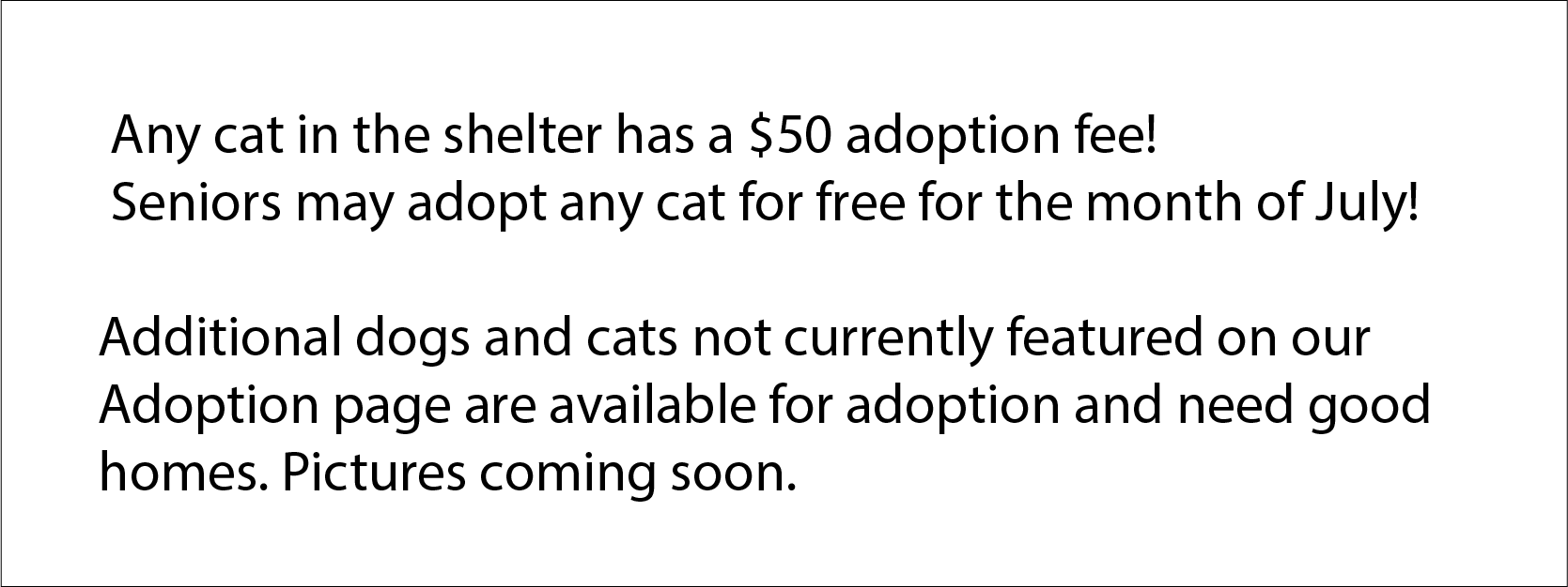 Any cat in the shelter has a $50 adoption fee!