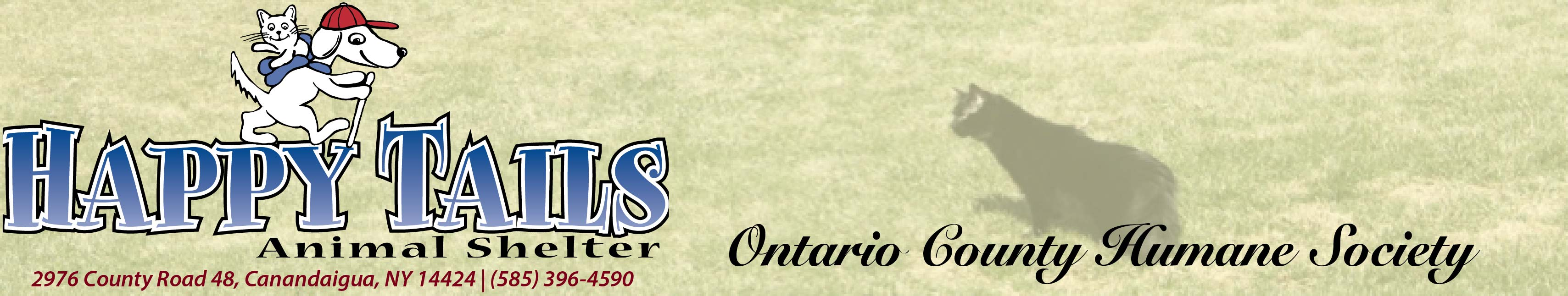 The Ontario County Humane Society - Happy Tails Shelter