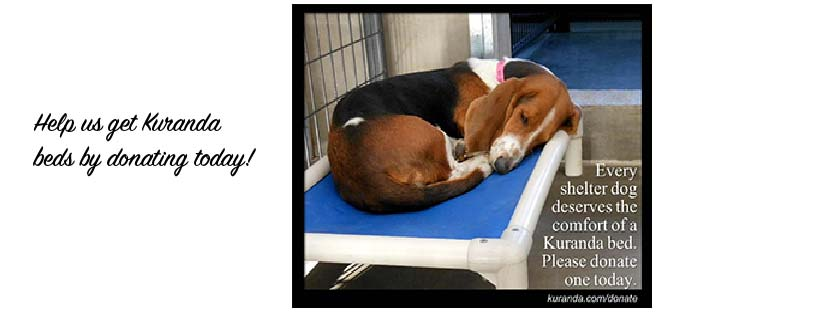 Please help us get Kandura beds by donating today!