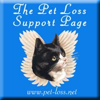 Pet Loss Support Help